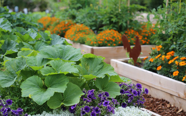 Eliminate Garden Waste With Ease